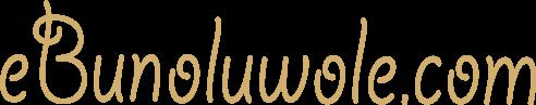 Ebun Oluwole
